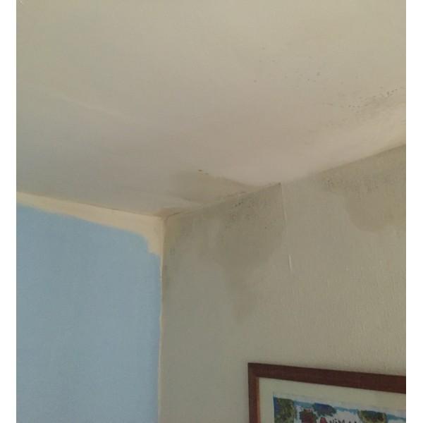 Suretherm Thermal Anti Condensation Paint 2.5 Litre